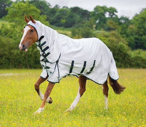 Shires Highlander Plus Fliegendecke Combo